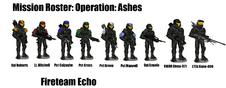 Operation ASHES