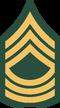 UNSC-A Master Sergeant
