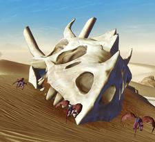 Skull Creature
