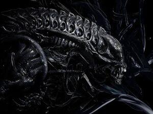 Alien-1-