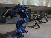 Halo-1-2-