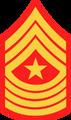 A Sergeant Major.png