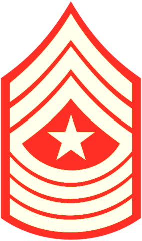 File:A Command Sergeant Major.png