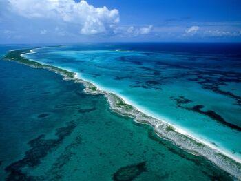 Barrera de coral tacenirok