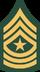SGM-(USA)