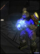 HaloP 20- 2009