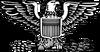 O-6 insignia
