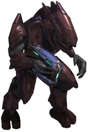 H3 - Sangheili Major render