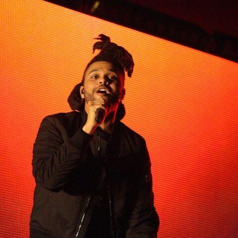 The Weeknd/Gallery   Halsey Wiki   FANDOM powered by Wikia