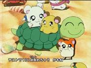 Hamtaro-turtle-credits