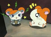 Hamtaro y Robo-ham