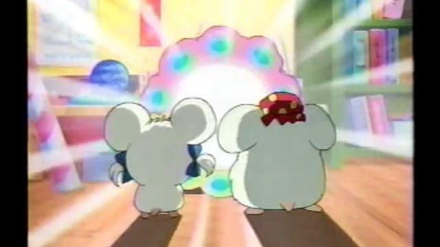Tottoko Hamutaro Episode 216 - The Changing Mirror