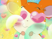 Hamtaro falls in Love