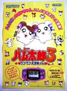 Rare Novelty Promotional Game Boy Advance Totako Hamtaro 3 Love Adventure May Ad Japanese
