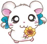 Hamtaro-rainbow-rescue-bijou
