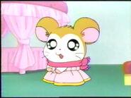 Pashmina in her dress
