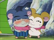 Sora and Pashmina