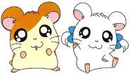 .028 Hamtaro Bijou & Zachary