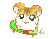 Hamtaro-2-gbc-artwork-stan