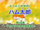 Hamtaro of the Wind