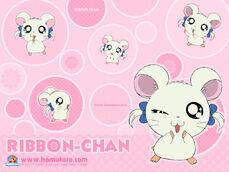 Ribbon 800 bg