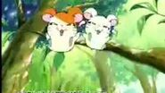 Hamtaro Ham-Ham Heartbreak Japanese Commercial