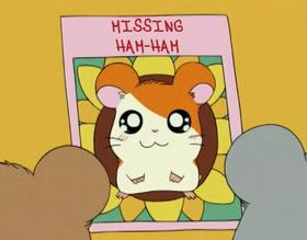 Missing Ham