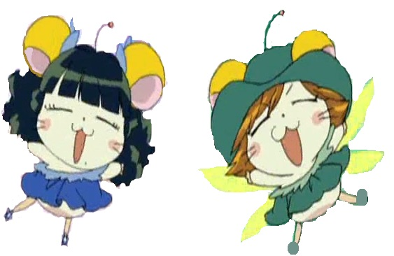 File:Eco Hamuzu.jpg