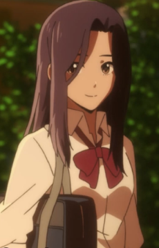 Fujisawa elena 3