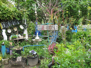 Dr. Dirt's Garden