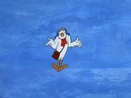 Yankee Doodle Pigeon (7)