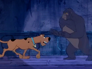 Scooby Growling At Ape Mann