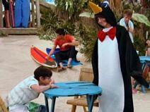 Oliver penguin