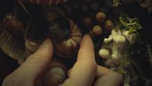 Hannibals Dishes S03E05 01