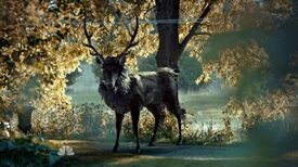Hannibal Stag zps46309a7c