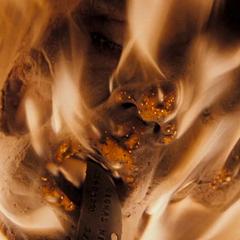 Disposing of Milko's Head, <i>Hannibal Rising</i>