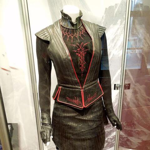 Joanna Kulig's outfit.