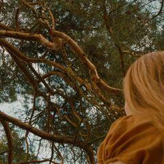 Mina sees Hansel stuck in a tree.