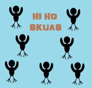 Hi Ho Skuas title