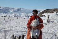 Emperor-penguin-researcher