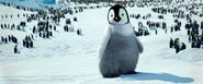 Baby Terry's look in Happy Feet movies