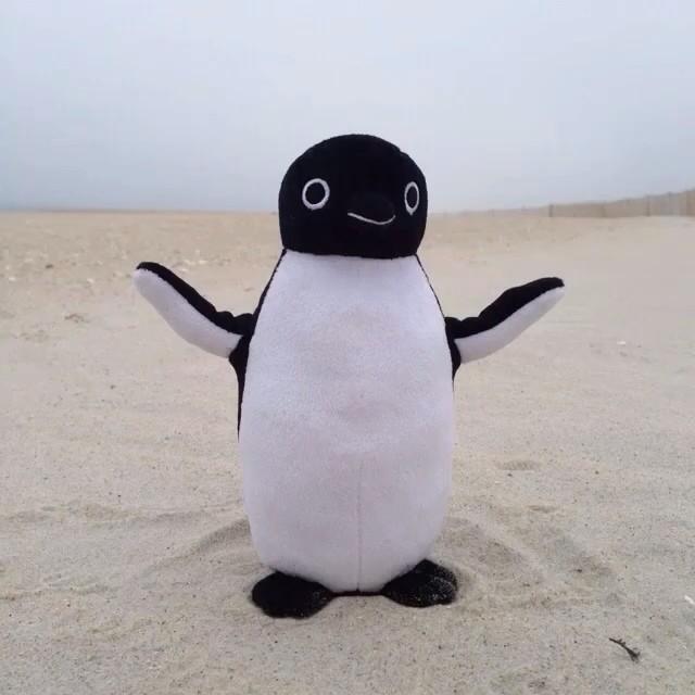 Moving Adelie Penguin Toy Happy Feet Fanon Wiki Fandom Powered