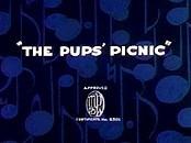 Pups picnic