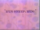 Run Sheep, Run!