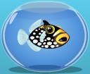 File:Clowntriggerfish.jpg