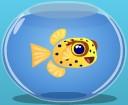 File:Cubicusboxfish.jpg