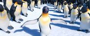 Happy Feet Two i22