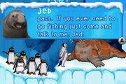 Jed the Elephant Seal