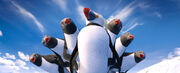 2011 happy feet 2 020
