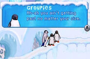Groupie Penguins